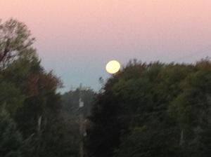 harvest moon 2013.09.19